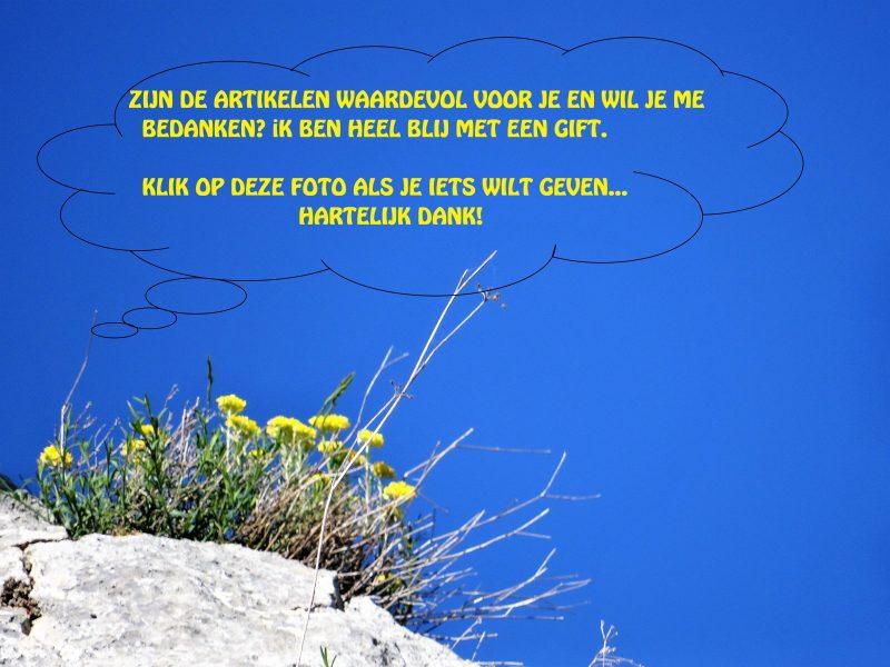 Afbeelding bij gift van gele bloemetjes met een helderblauwe lucht, met tekst: zijn de artikelen waardevol voor je en wil je me bedanken? Ik ben heel blij met een gift. Klik op de foto op deze foto als je iets wilt geven... Hartelijk dank!
