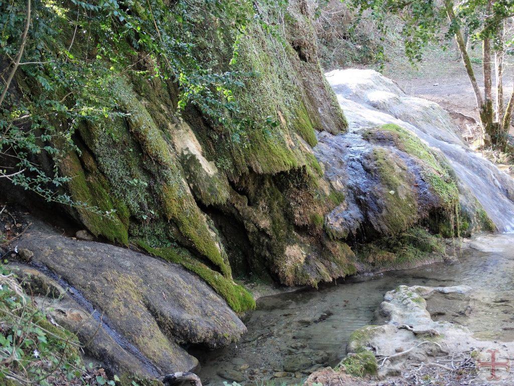 Water dat stroomt langs groen overhangende rotsen